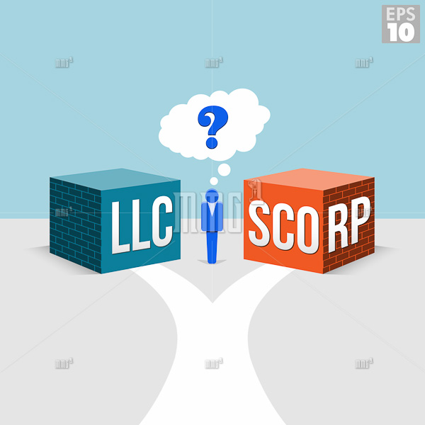LLC or S-Corporation Options for a Small Business Owner with a road leading to both forms of incorporation.